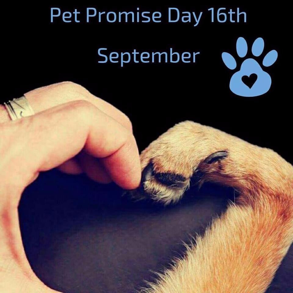 pet-promise-day-e1506519026976.jpg