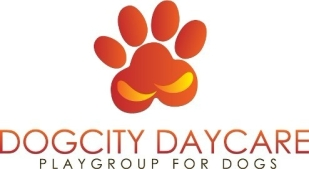 dogcity-daycare-grooming-kent-town-pet-groomers-0329-938x704.jpg